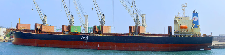 Singapore Shipping International Pte Ltd | Partners